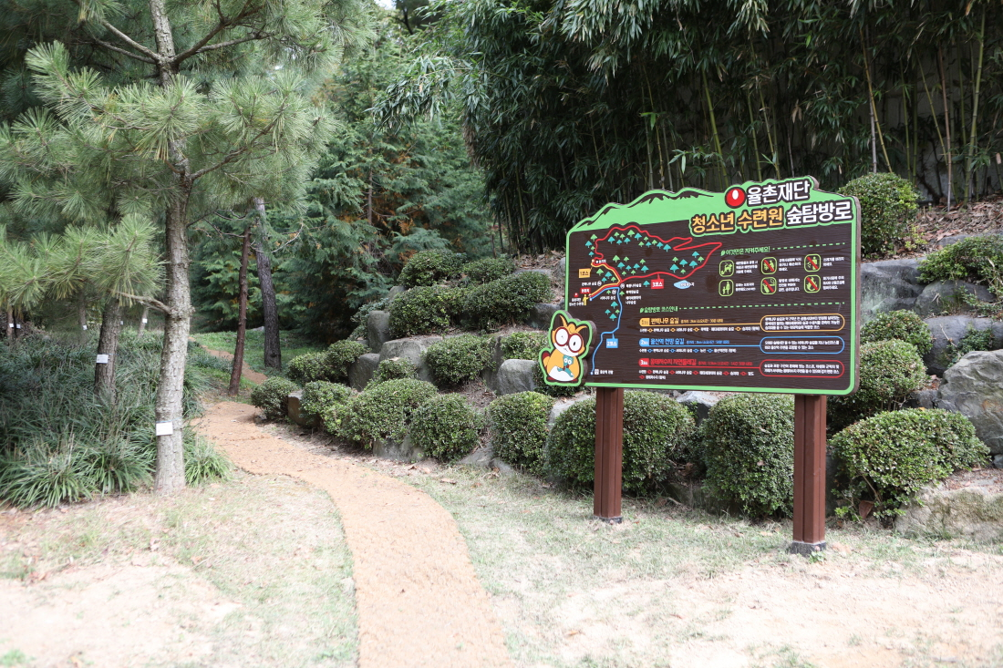37.숲탐방로.JPG